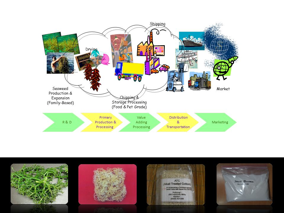 Drying Shipping Seaweed Production & Expansion (Family-Based) Chipping & Storage Processing (Food & Pet Grade) Market Primary Production & Processing
