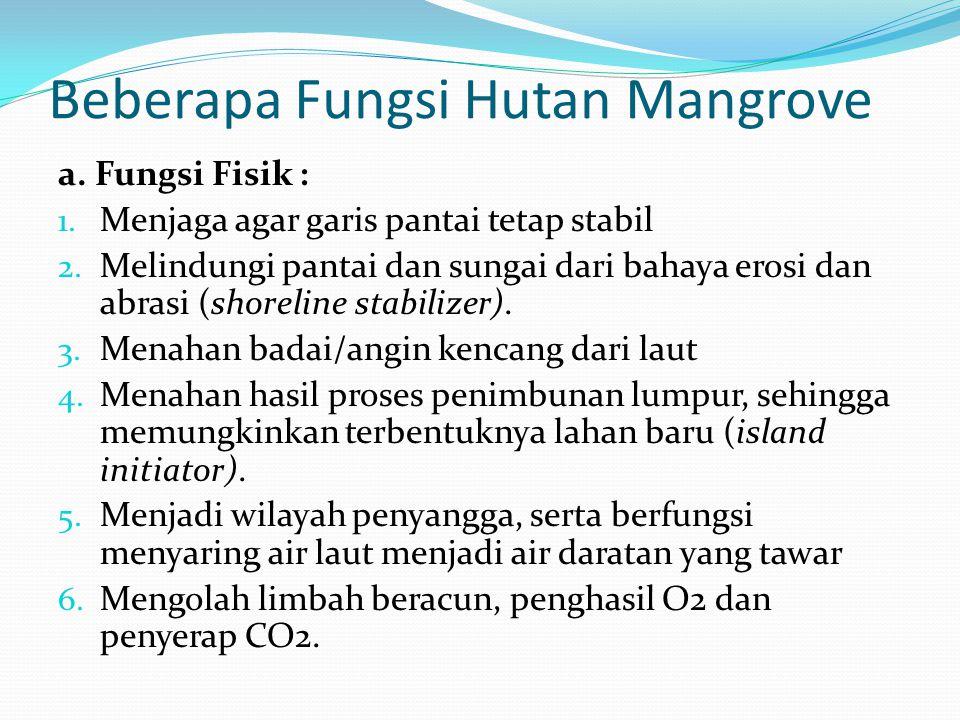 Beberapa Fungsi Hutan Mangrove a. Fungsi Fisik : 1. Menjaga agar garis pantai tetap stabil 2. Melindungi pantai dan sungai dari bahaya erosi dan abras
