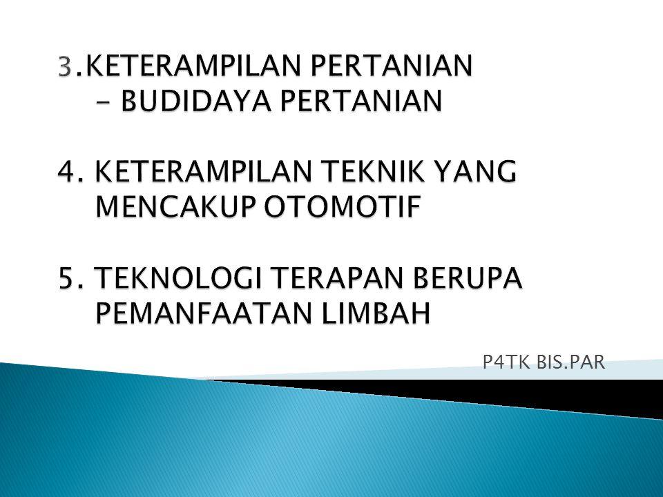 P4TK BIS.PAR