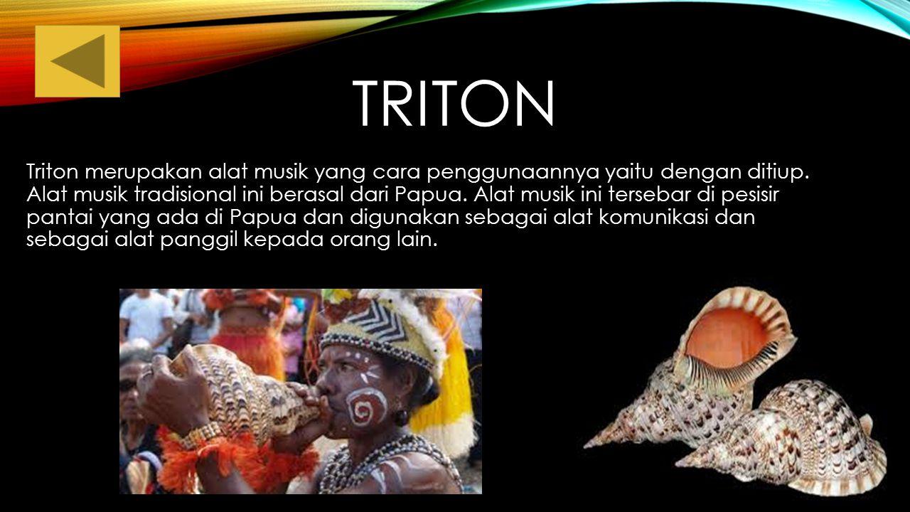 TIFA Tifa adalah alat musik yang berasal dari maluku dan papua, Tifa mirip seperti gendang cara dimainkan adalah dengan dipukul.