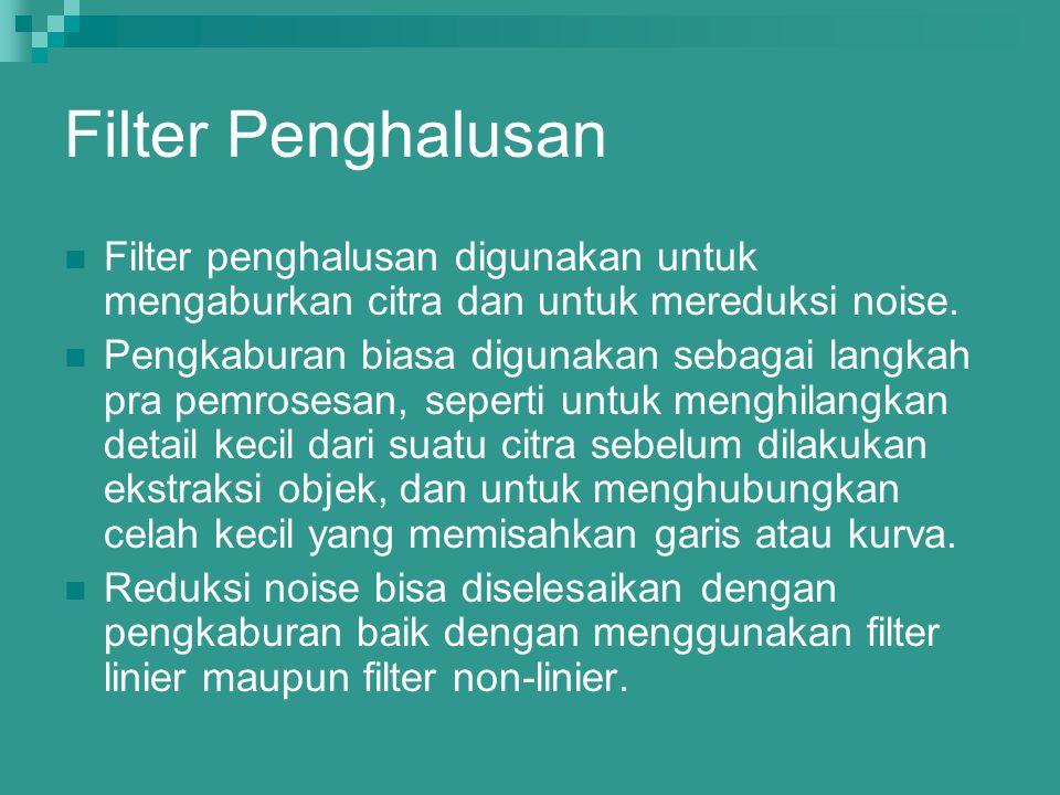 Filter Penghalusan Filter penghalusan digunakan untuk mengaburkan citra dan untuk mereduksi noise. Pengkaburan biasa digunakan sebagai langkah pra pem