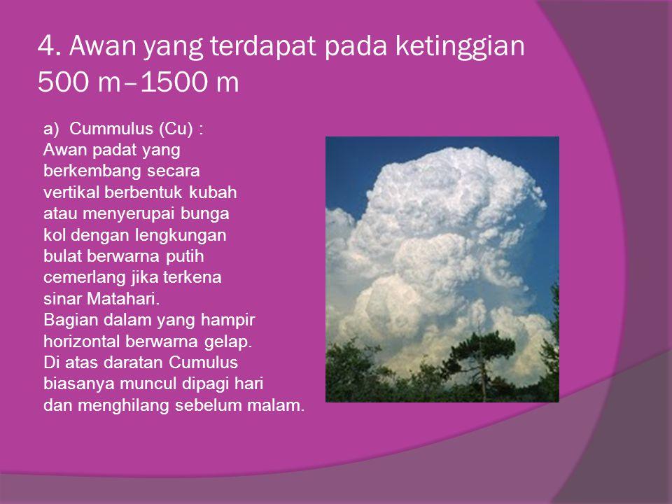4. Awan yang terdapat pada ketinggian 500 m–1500 m a) Cummulus (Cu) : Awan padat yang berkembang secara vertikal berbentuk kubah atau menyerupai bunga