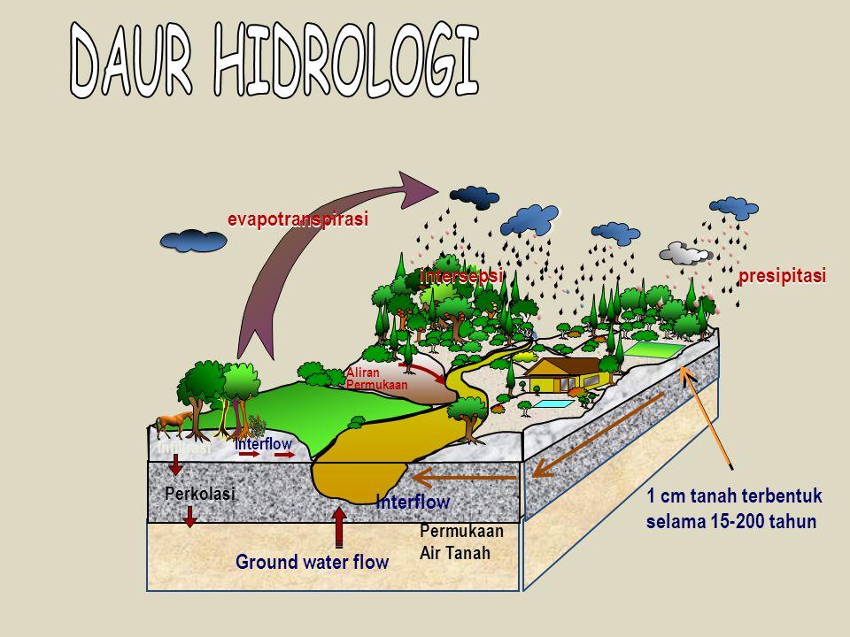 Interflow Aliran Permukaan Infiltrasi Permukaan Air Tanah intersepsi presipitasi Interflow Ground water flow Perkolasi evapotranspirasi 1 cm tanah ter