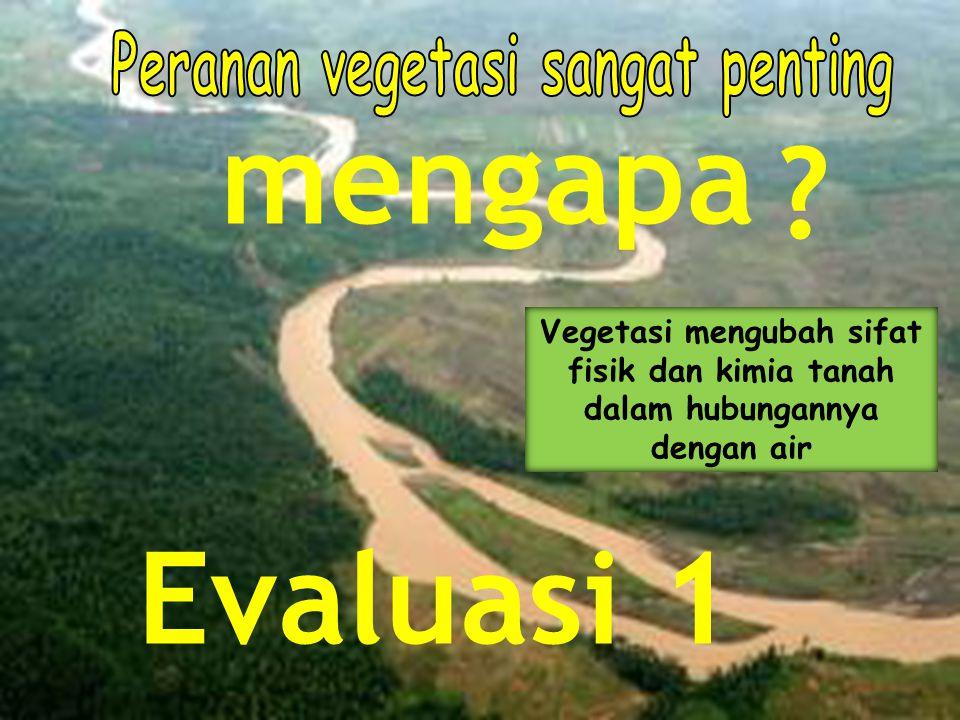 ? mengapa Vegetasi mengubah sifat fisik dan kimia tanah dalam hubungannya dengan air Evaluasi 1