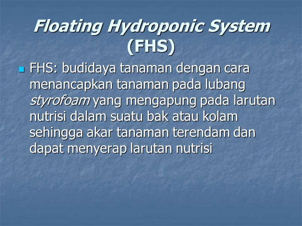 Floating Hydroponic System (FHS) FHS: budidaya tanaman dengan cara menancapkan tanaman pada lubang styrofoam yang mengapung pada larutan nutrisi dalam