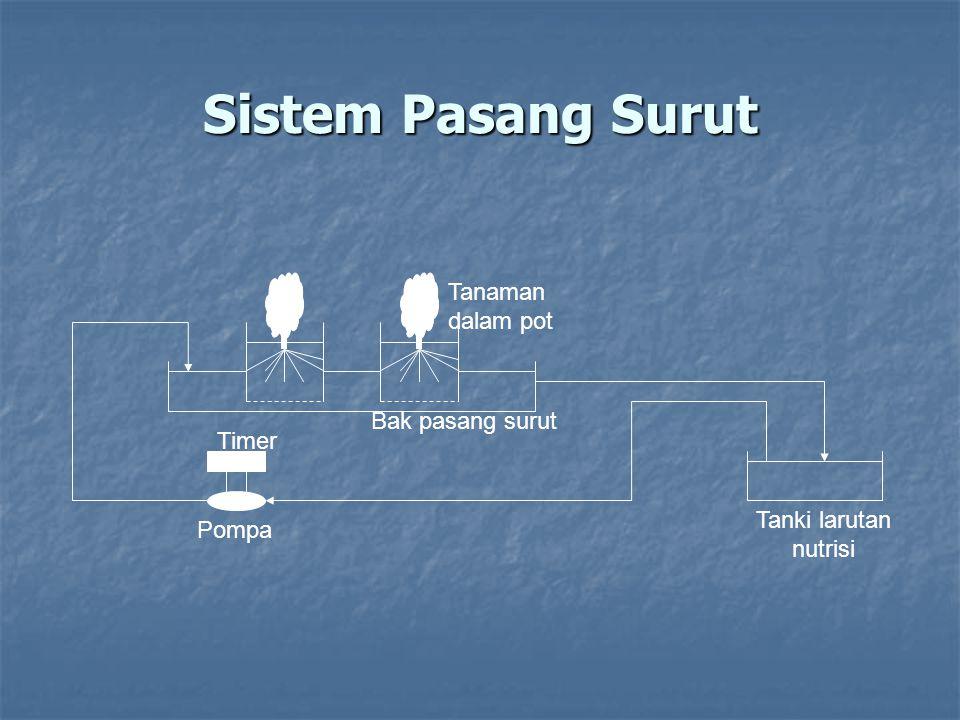 Sistem Pasang Surut Timer Pompa Tanaman dalam pot Tanki larutan nutrisi Bak pasang surut