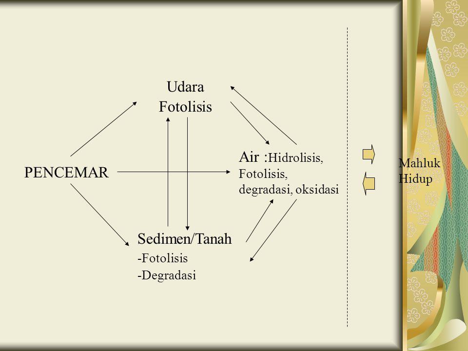 PENCEMAR Udara Fotolisis Sedimen/Tanah -Fotolisis -Degradasi Air : Hidrolisis, Fotolisis, degradasi, oksidasi Mahluk Hidup