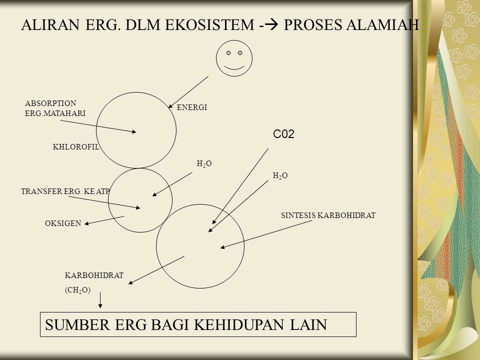 ALIRAN ERG. DLM EKOSISTEM -  PROSES ALAMIAH ENERGI KHLOROFIL ABSORPTION ERG.MATAHARI H2OH2O H2OH2O SINTESIS KARBOHIDRAT TRANSFER ERG. KE ATP OKSIGEN