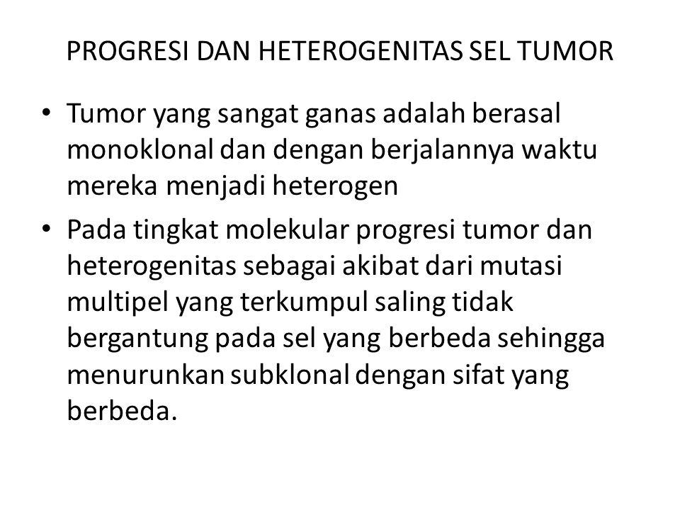 PROGRESI DAN HETEROGENITAS SEL TUMOR Tumor yang sangat ganas adalah berasal monoklonal dan dengan berjalannya waktu mereka menjadi heterogen Pada ting