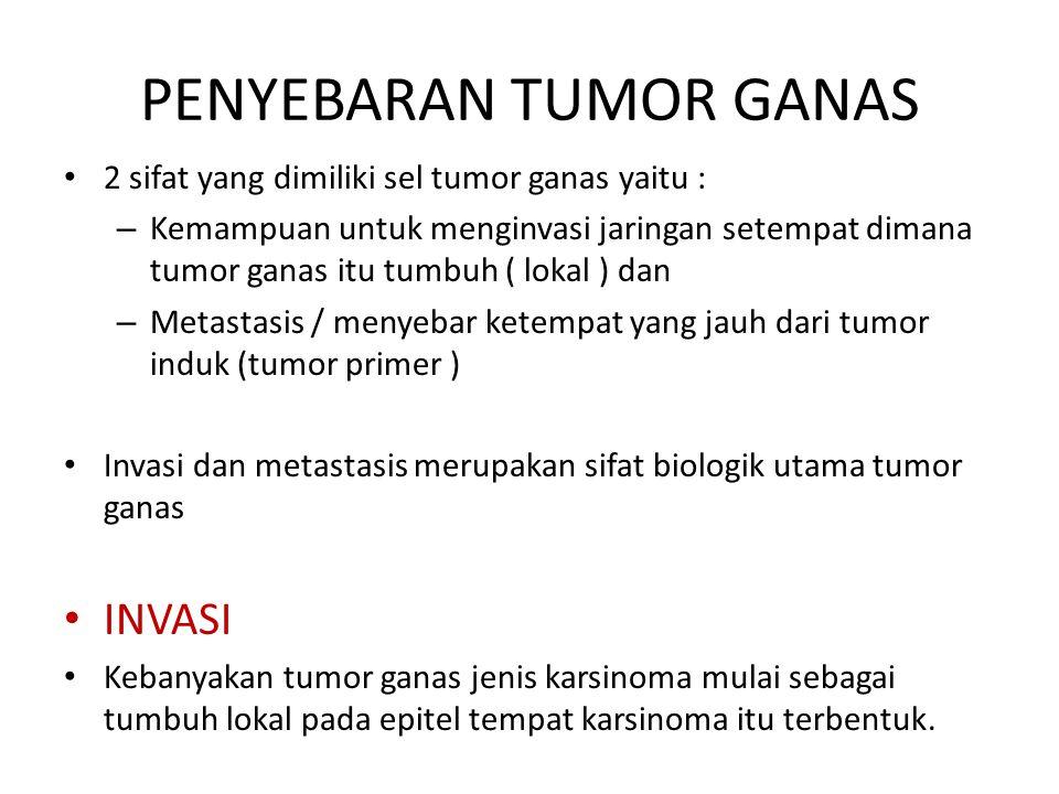 PENYEBARAN TUMOR GANAS 2 sifat yang dimiliki sel tumor ganas yaitu : – Kemampuan untuk menginvasi jaringan setempat dimana tumor ganas itu tumbuh ( lo