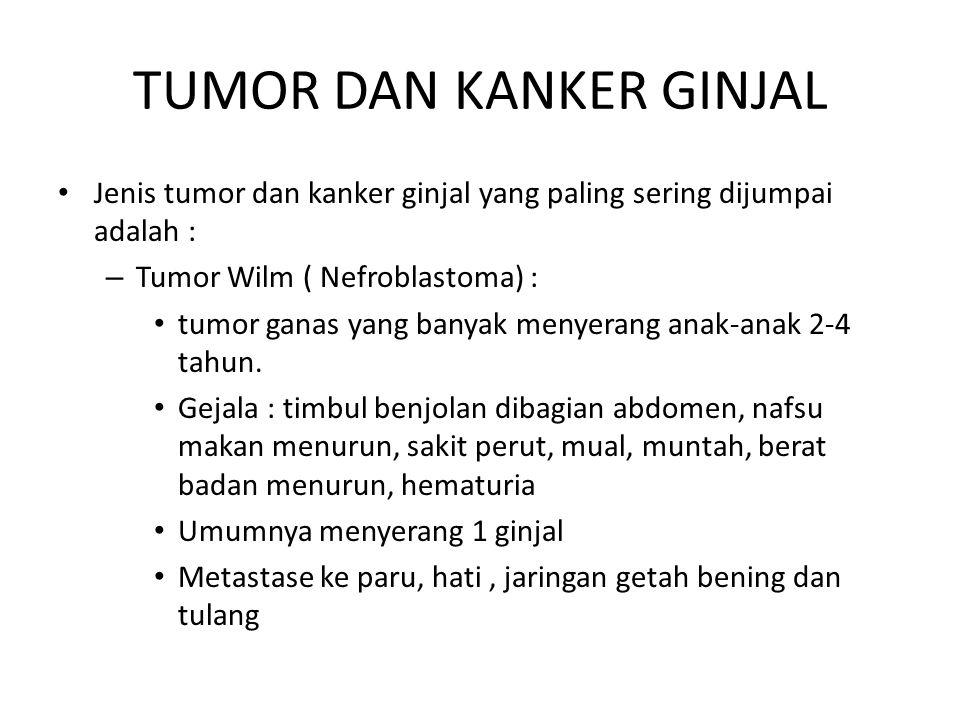 TUMOR DAN KANKER GINJAL Jenis tumor dan kanker ginjal yang paling sering dijumpai adalah : – Tumor Wilm ( Nefroblastoma) : tumor ganas yang banyak men