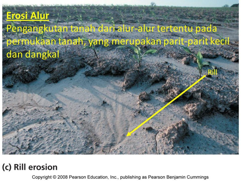 Macam erosi tanah Rill Erosi Alur Pengangkutan tanah dari alur-alur tertentu pada permukaan tanah, yang merupakan parit-parit kecil dan dangkal
