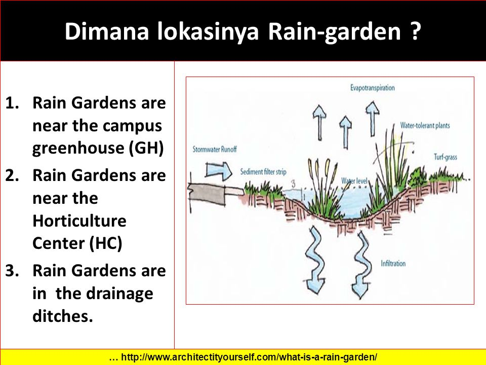 Dimana lokasinya Rain-garden ? 1.Rain Gardens are near the campus greenhouse (GH) 2.Rain Gardens are near the Horticulture Center (HC) 3.Rain Gardens