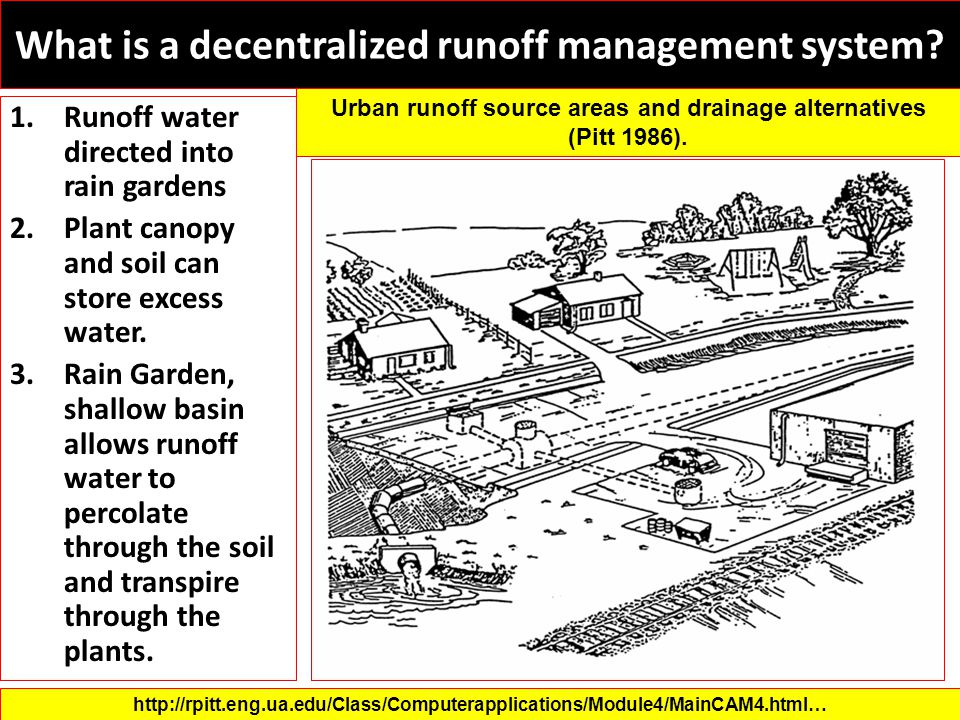 What is a decentralized runoff management system? 1.Runoff water directed into rain gardens 2.Plant canopy and soil can store excess water. 3.Rain Gar