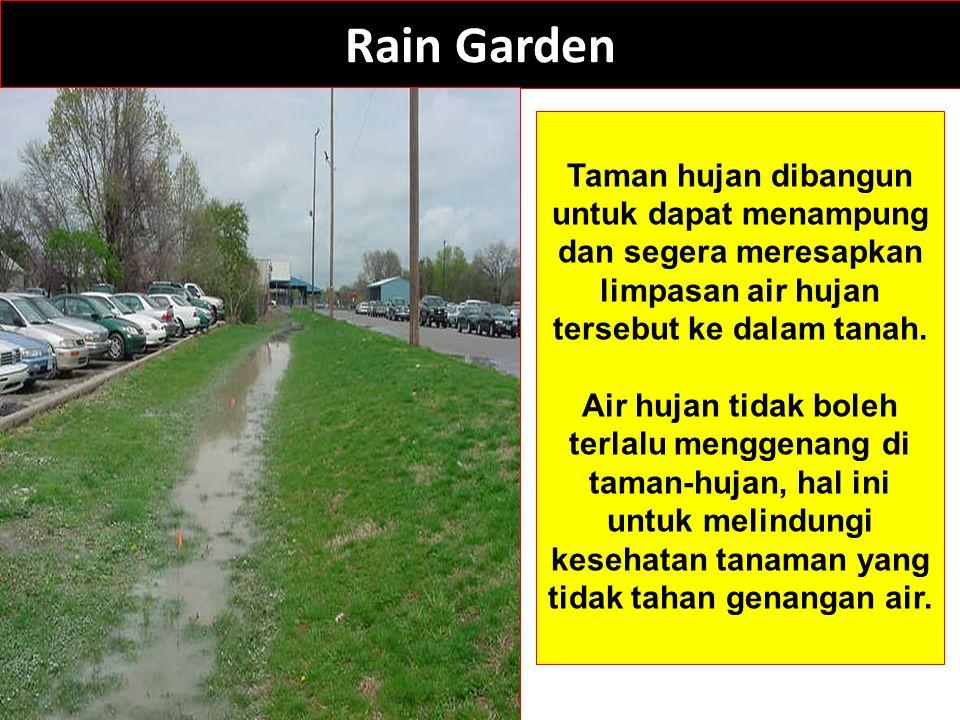 Rain Garden Taman hujan dibangun untuk dapat menampung dan segera meresapkan limpasan air hujan tersebut ke dalam tanah. Air hujan tidak boleh terlalu