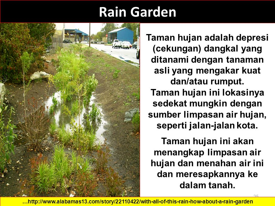 Rain Garden 25 …http://www.alabamas13.com/story/22110422/with-all-of-this-rain-how-about-a-rain-garden Taman hujan adalah depresi (cekungan) dangkal y