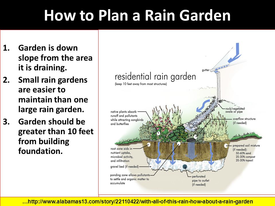 How to Plan a Rain Garden 1.Garden is down slope from the area it is draining. 2.Small rain gardens are easier to maintain than one large rain garden.