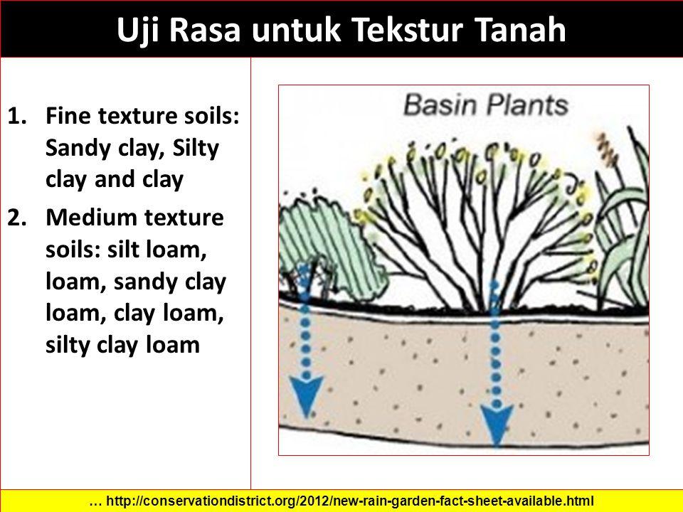 Uji Rasa untuk Tekstur Tanah 1.Fine texture soils: Sandy clay, Silty clay and clay 2.Medium texture soils: silt loam, loam, sandy clay loam, clay loam, silty clay loam … http://conservationdistrict.org/2012/new-rain-garden-fact-sheet-available.html