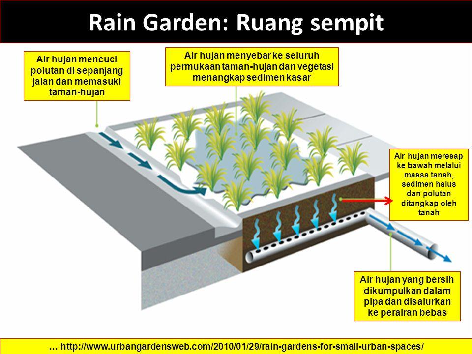 Rain Garden: Ruang sempit … http://www.urbangardensweb.com/2010/01/29/rain-gardens-for-small-urban-spaces/ Air hujan mencuci polutan di sepanjang jala