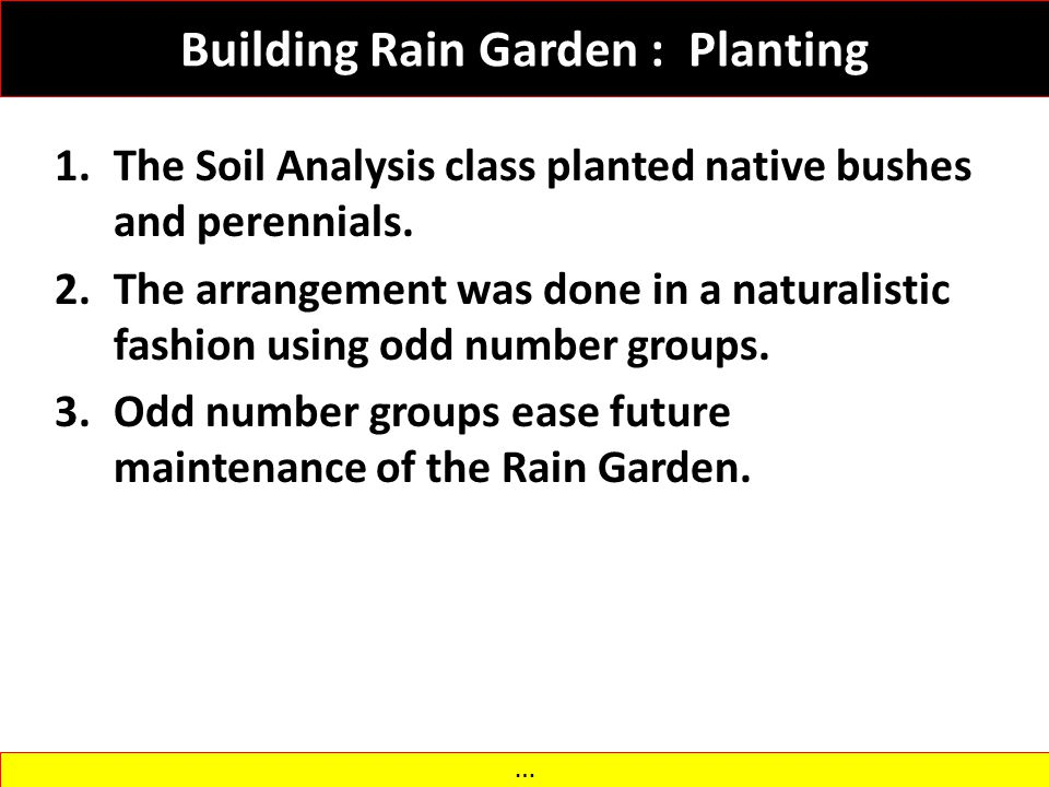 Building Rain Garden : Planting 1.The Soil Analysis class planted native bushes and perennials. 2.The arrangement was done in a naturalistic fashion u