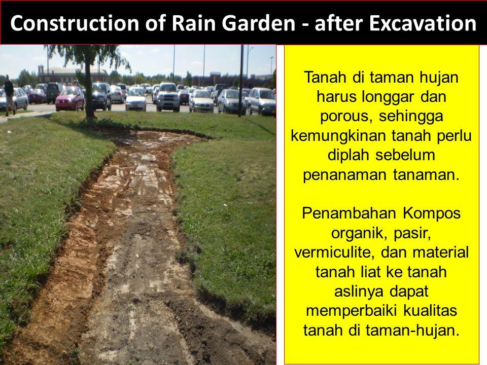 Construction of Rain Garden - after Excavation Tanah di taman hujan harus longgar dan porous, sehingga kemungkinan tanah perlu diplah sebelum penanaman tanaman.