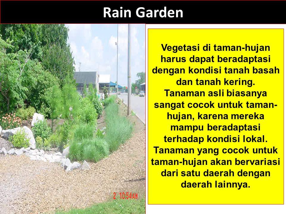 Rain Garden Vegetasi di taman-hujan harus dapat beradaptasi dengan kondisi tanah basah dan tanah kering. Tanaman asli biasanya sangat cocok untuk tama