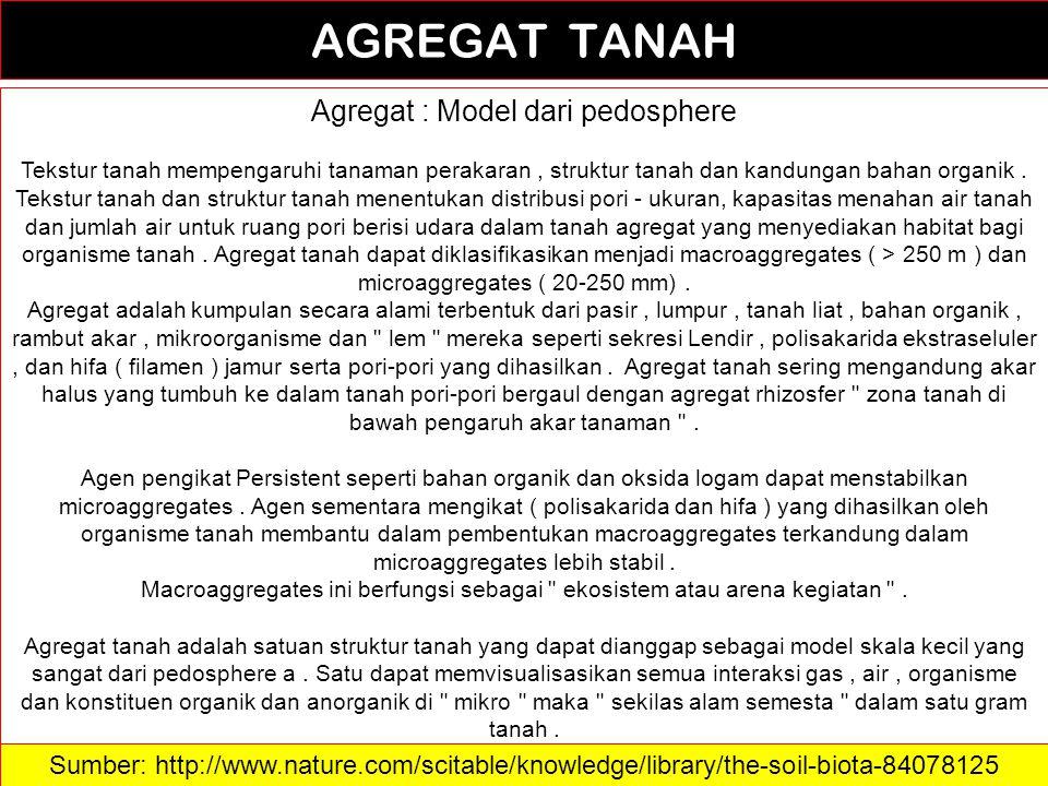 22 AGREGAT TANAH Agregat : Model dari pedosphere Tekstur tanah mempengaruhi tanaman perakaran, struktur tanah dan kandungan bahan organik. Tekstur tan