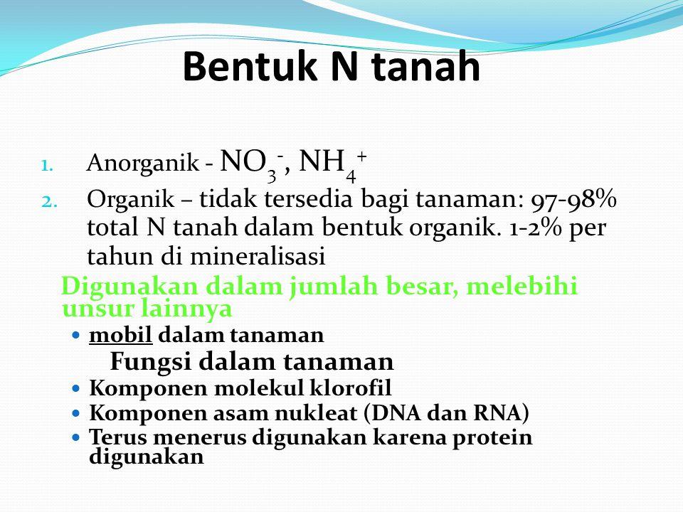 1. Anorganik - NO 3 -, NH 4 + 2.