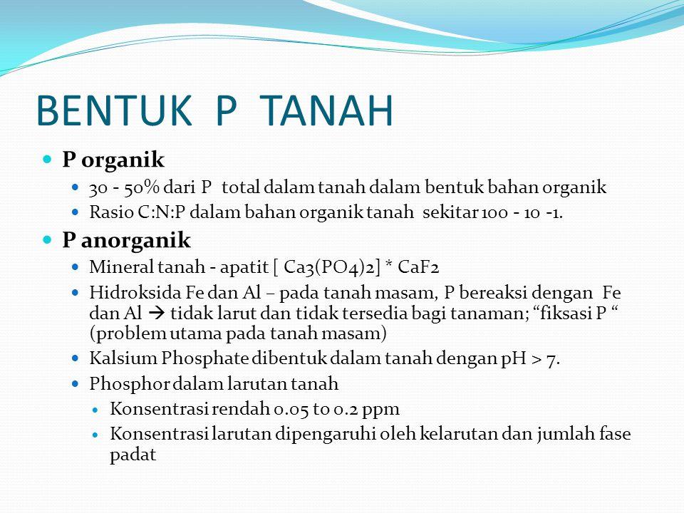 BENTUK P TANAH P organik 30 - 50% dari P total dalam tanah dalam bentuk bahan organik Rasio C:N:P dalam bahan organik tanah sekitar 100 - 10 -1.