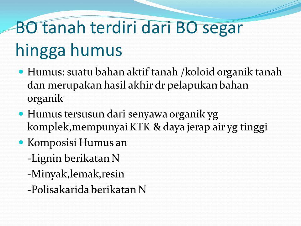 BO tanah terdiri dari BO segar hingga humus Humus: suatu bahan aktif tanah /koloid organik tanah dan merupakan hasil akhir dr pelapukan bahan organik Humus tersusun dari senyawa organik yg komplek,mempunyai KTK & daya jerap air yg tinggi Komposisi Humus an -Lignin berikatan N -Minyak,lemak,resin -Polisakarida berikatan N