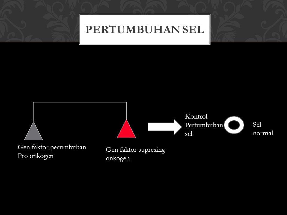 BASIK MOLEKULER KANKER Pertumbuhan sel Tdk terkontrol Konversi pro-onkogen ke onkogen - amplification c-erbB2 in breast cancer - point mutation of c-ras in kidney and bladder cancers chromosome translocation of c-myc in Burkitt's lymphoma Altered tumor-suppressor genes: P53 mutation in prostate cancer: failure in cell cycle arrest or apoptosis of prostate tumors Rb mutation: fail to prevent mitosis