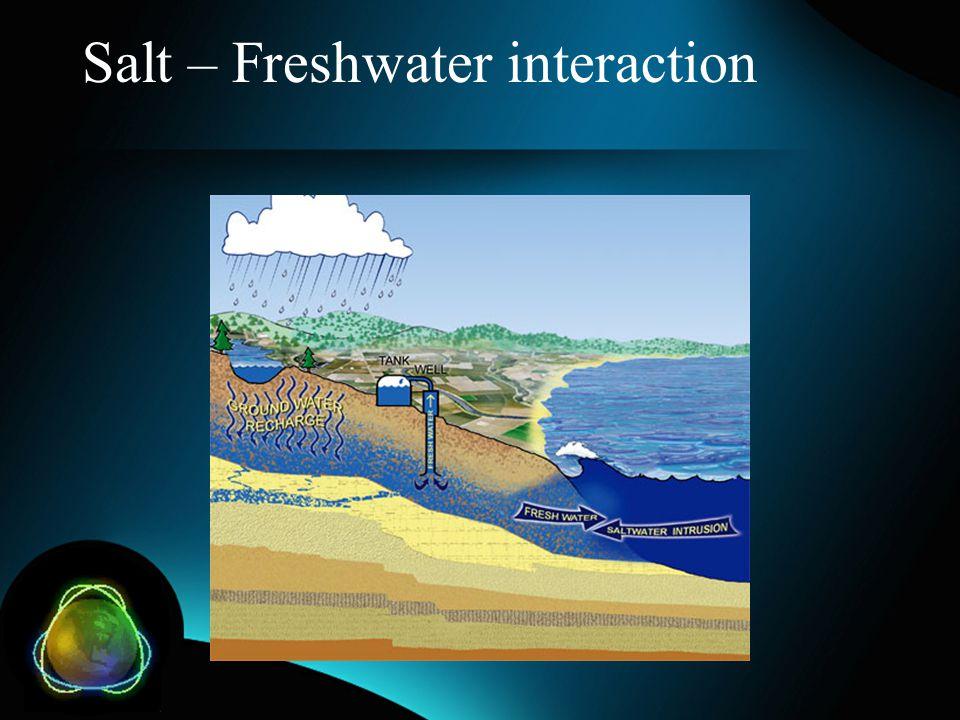 Salt – Freshwater interaction