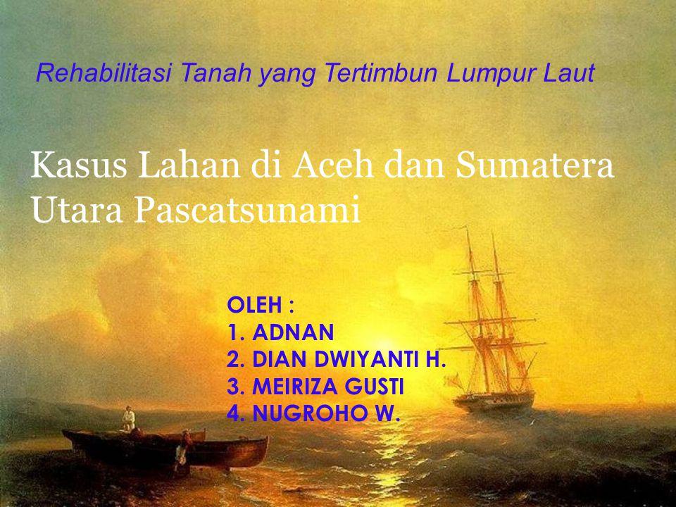 Kasus Lahan di Aceh dan Sumatera Utara Pascatsunami Rehabilitasi Tanah yang Tertimbun Lumpur Laut OLEH : 1.ADNAN 2.DIAN DWIYANTI H.