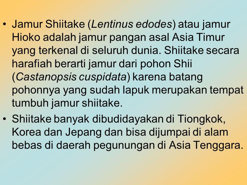 Jamur Shiitake (Lentinus edodes) atau jamur Hioko adalah jamur pangan asal Asia Timur yang terkenal di seluruh dunia. Shiitake secara harafiah berarti