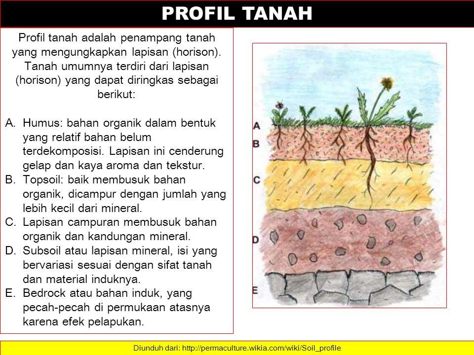 SOIL PROFILE Dalam penampang melintang suatu tanah ditemukan berbagai zone atau lapisan yang disebut Horison .