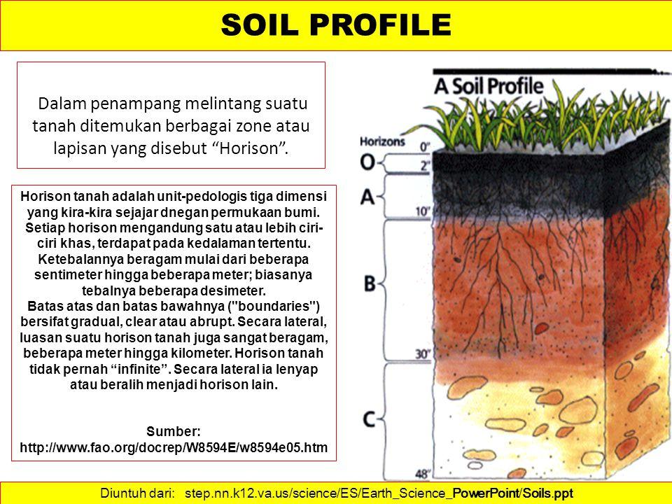 Horison O terdiri atas seresah tumbuhan dan bahan organik mlainnya yang terletak di permukaan tganah.
