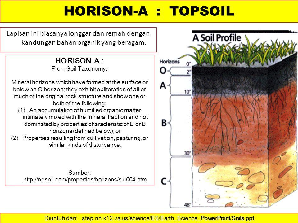 Lapisan tanah ini biasanya sangat produktif.Lapisan tanah ini harus di konservasi .