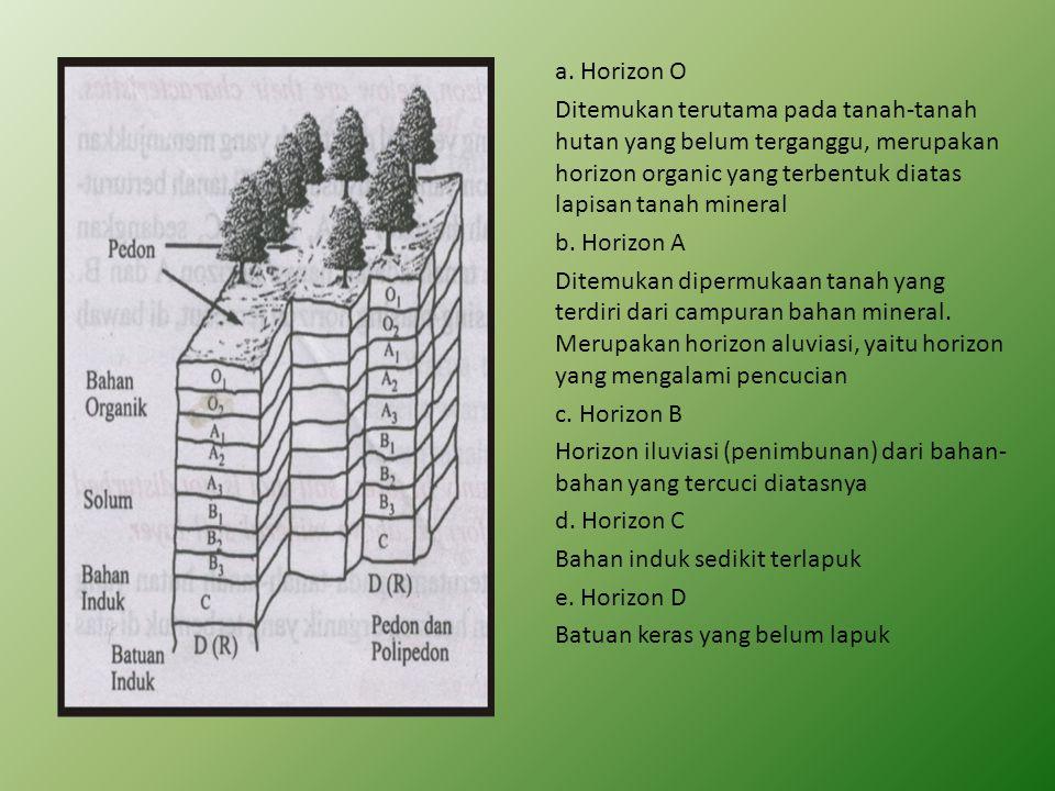 a. Horizon O Ditemukan terutama pada tanah-tanah hutan yang belum terganggu, merupakan horizon organic yang terbentuk diatas lapisan tanah mineral b.