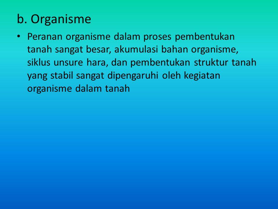 b. Organisme Peranan organisme dalam proses pembentukan tanah sangat besar, akumulasi bahan organisme, siklus unsure hara, dan pembentukan struktur ta