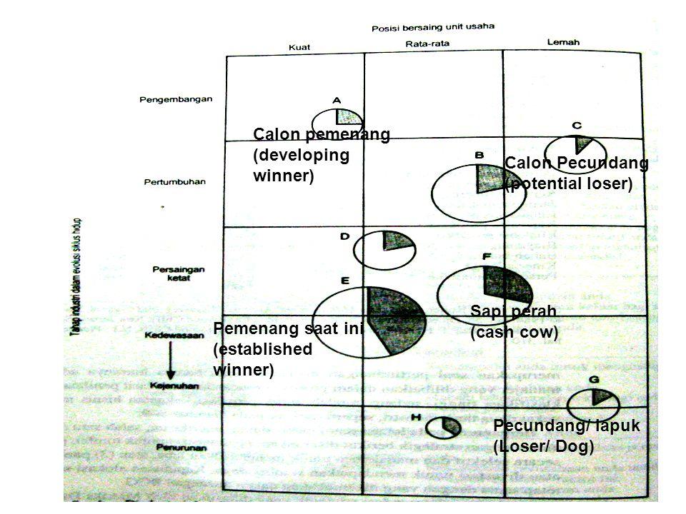 Calon pemenang (developing winner) Calon Pecundang (potential loser) Pemenang saat ini (established winner) Sapi perah (cash cow) Pecundang/ lapuk (Loser/ Dog)