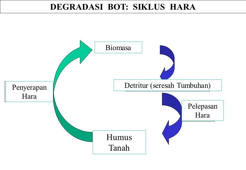 Soil Humus DEGRADASI BOT: SIKLUS HARA Biomass Detritus (Plant Debris) Nutrient Release Nutrient Incorporation Biomasa Humus Tanah Detritur (seresah Tu
