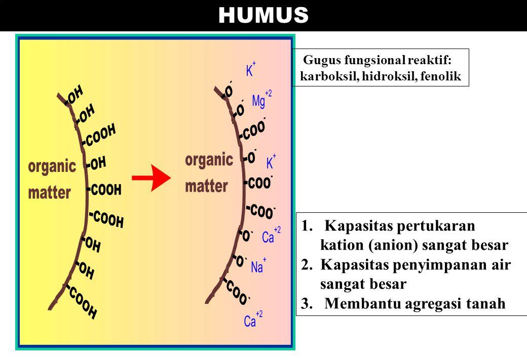 Gugus fungsional reaktif: karboksil, hidroksil, fenolik HUMUS 1. Kapasitas pertukaran kation (anion) sangat besar 2.Kapasitas penyimpanan air sangat b