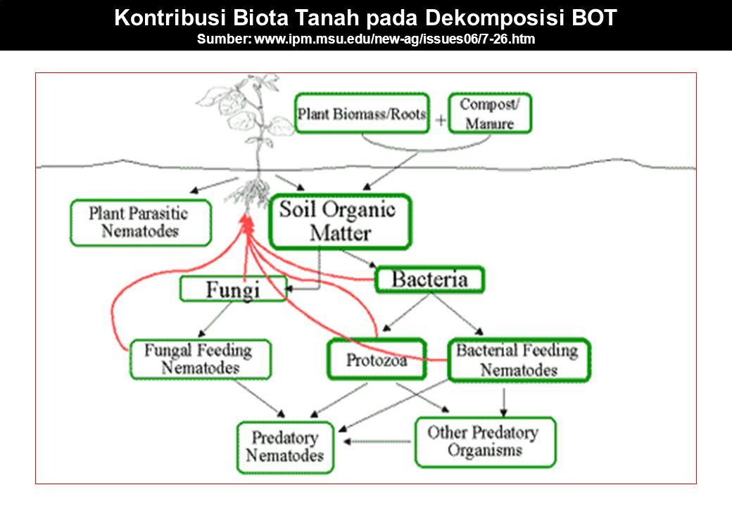 Kontribusi Biota Tanah pada Dekomposisi BOT Sumber: www.ipm.msu.edu/new-ag/issues06/7-26.htm