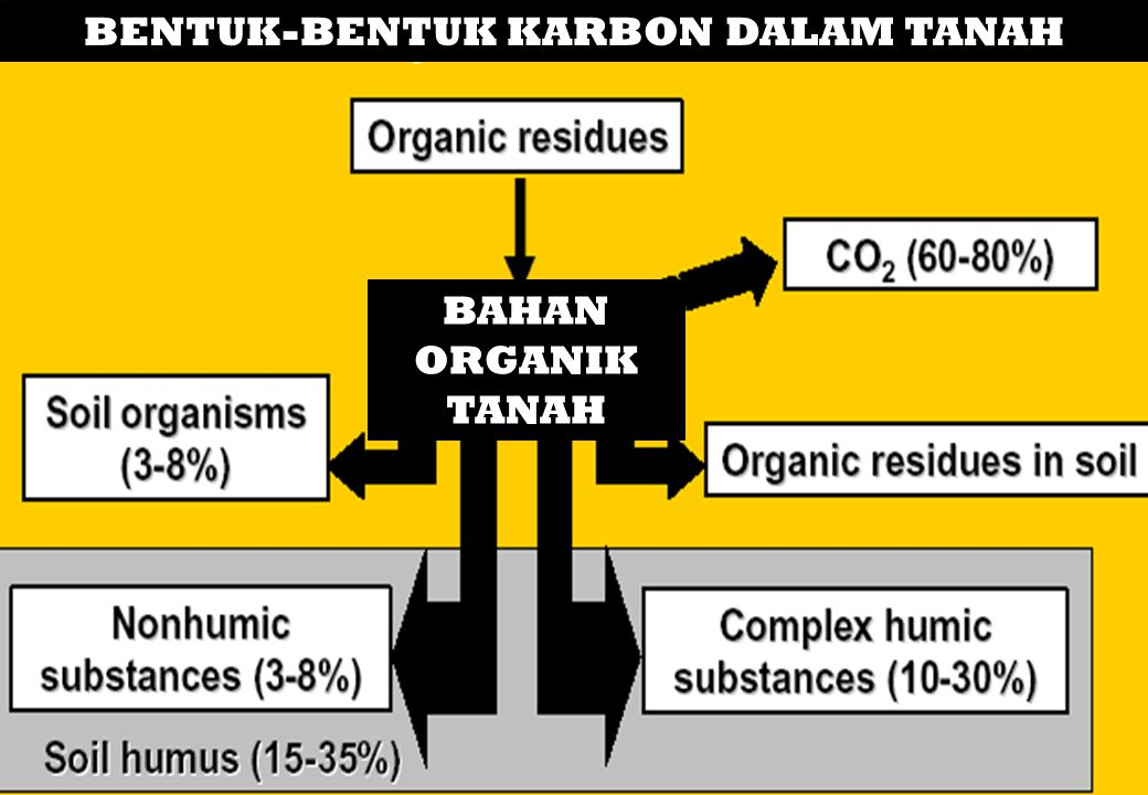 BOT bersifat labile 1.it can decline rapidly if the soil environment changes and renewable 2.it can be replenished by inputs of organic material to the soil.