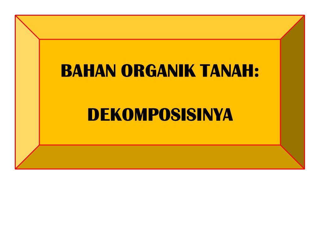 BAHAN ORGANIK TANAH: DEKOMPOSISINYA