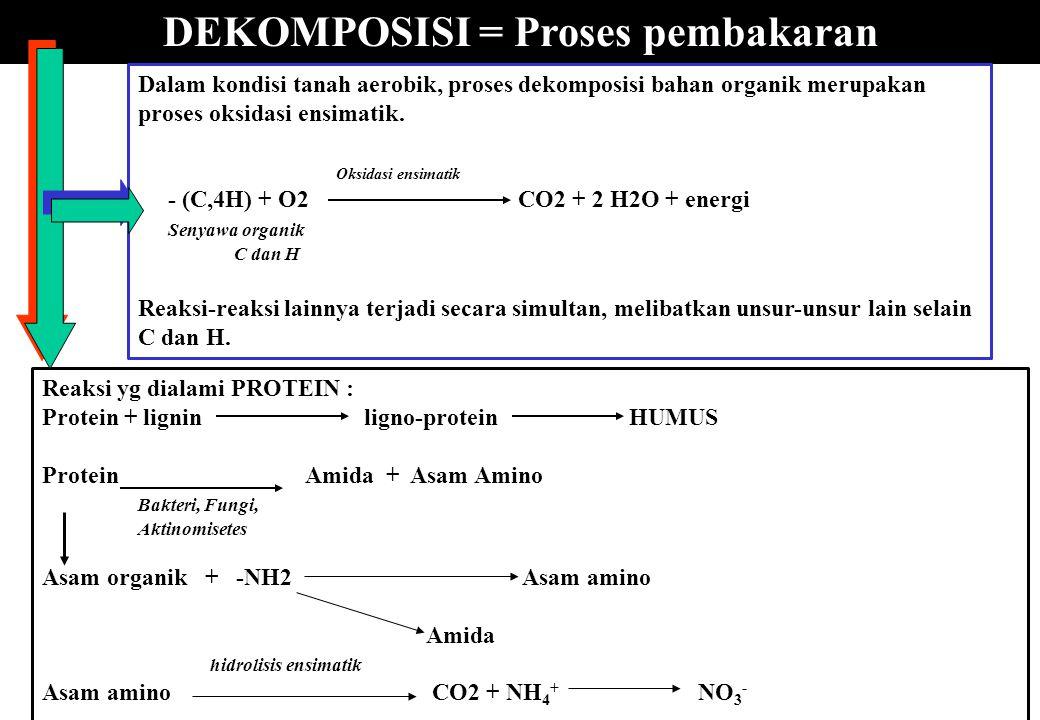 DEKOMPOSISI = Proses pembakaran Dalam kondisi tanah aerobik, proses dekomposisi bahan organik merupakan proses oksidasi ensimatik. Oksidasi ensimatik