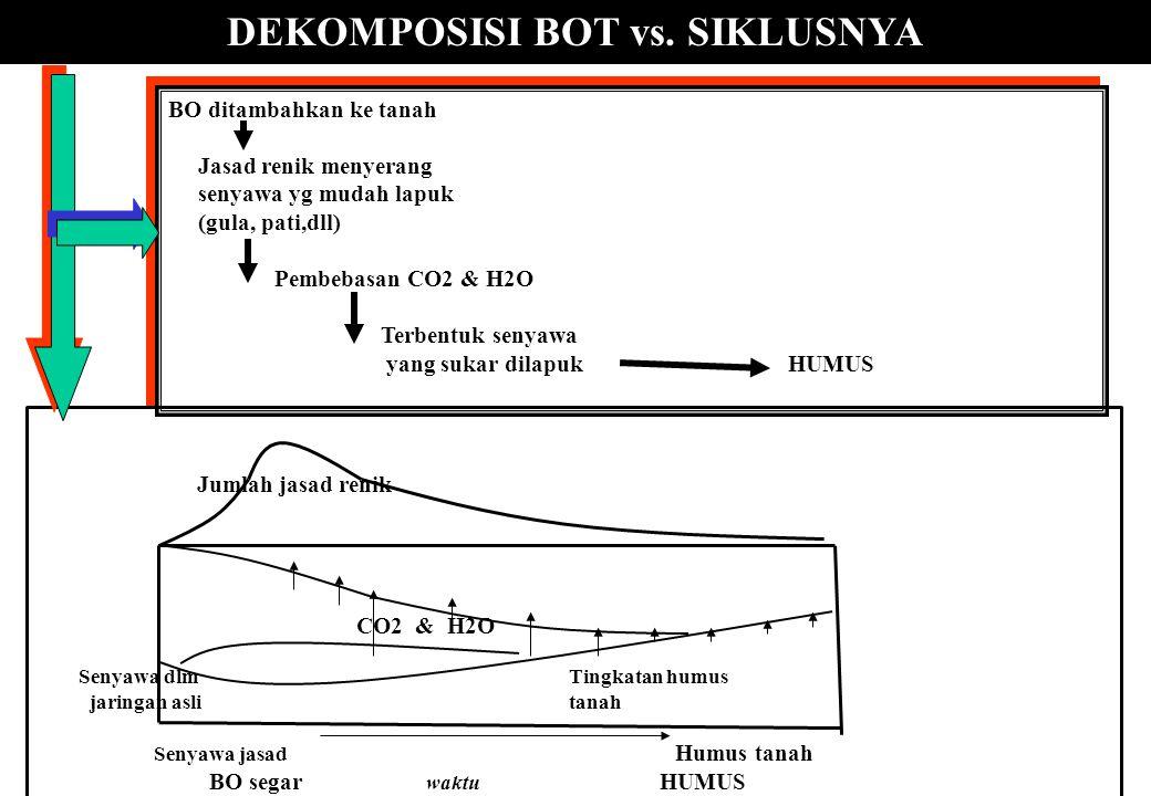DEKOMPOSISI BOT vs. SIKLUSNYA BO ditambahkan ke tanah Jasad renik menyerang senyawa yg mudah lapuk (gula, pati,dll) Pembebasan CO2 & H2O Terbentuk sen