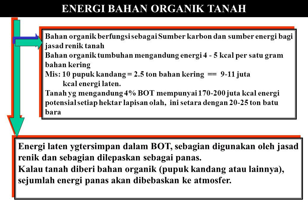 ENERGI BAHAN ORGANIK TANAH Bahan organik berfungsi sebagai Sumber karbon dan sumber energi bagi jasad renik tanah Bahan organik tumbuhan mengandung en