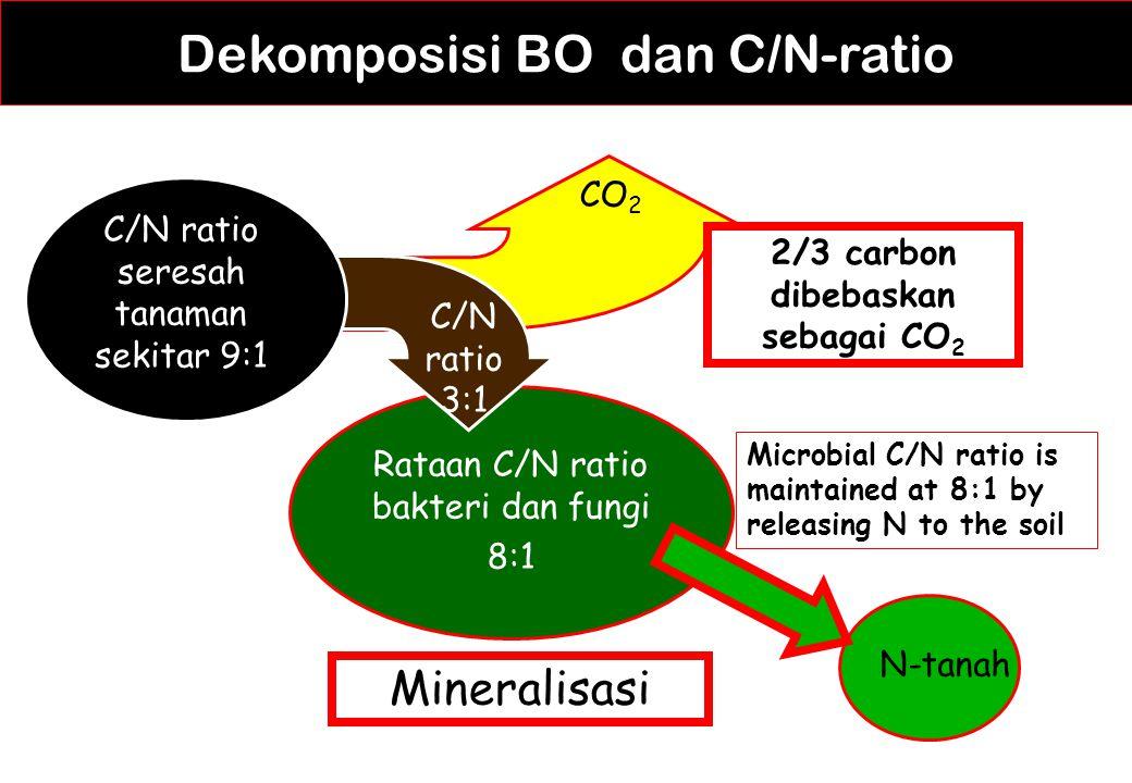 Dekomposisi BO dan C/N-ratio Rataan C/N ratio bakteri dan fungi 8:1 C/N ratio seresah tanaman sekitar 9:1 CO 2 C/N ratio 3:1 2/3 carbon dibebaskan seb