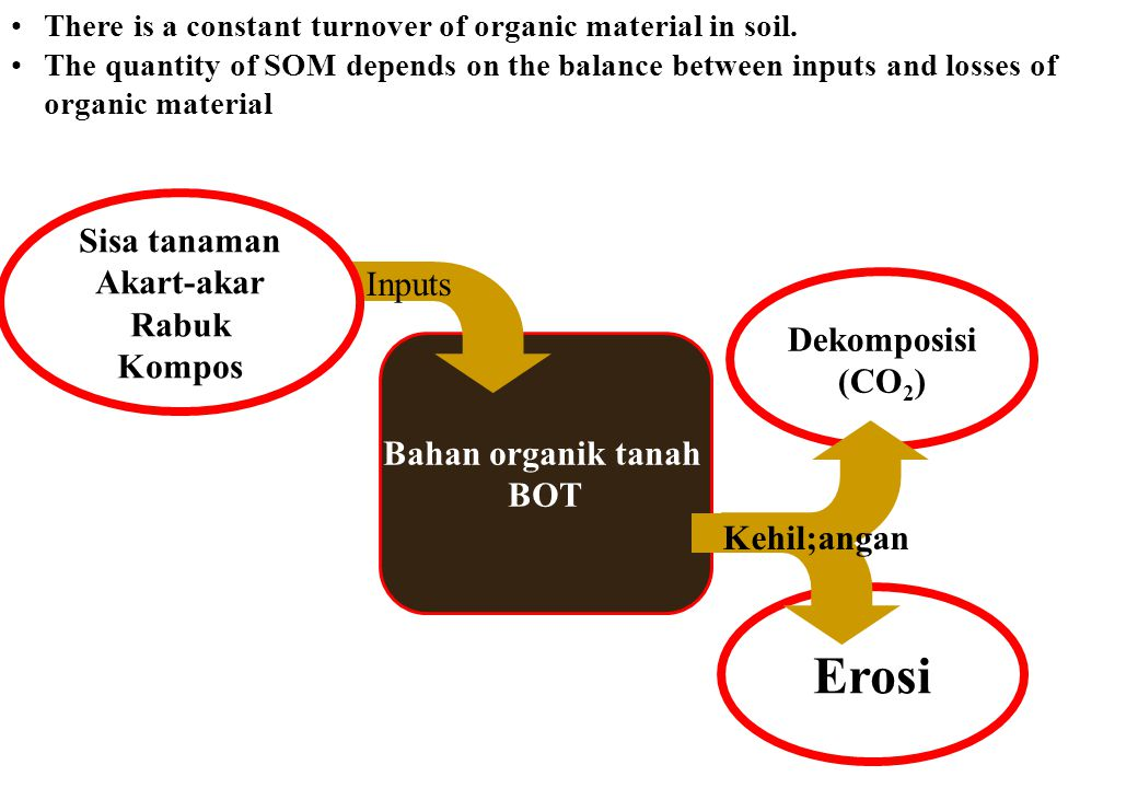 Dekomposisi (CO 2 ) Erosi Bahan organik tanah BOT Kehil;angan Inputs Sisa tanaman Akart-akar Rabuk Kompos There is a constant turnover of organic mate